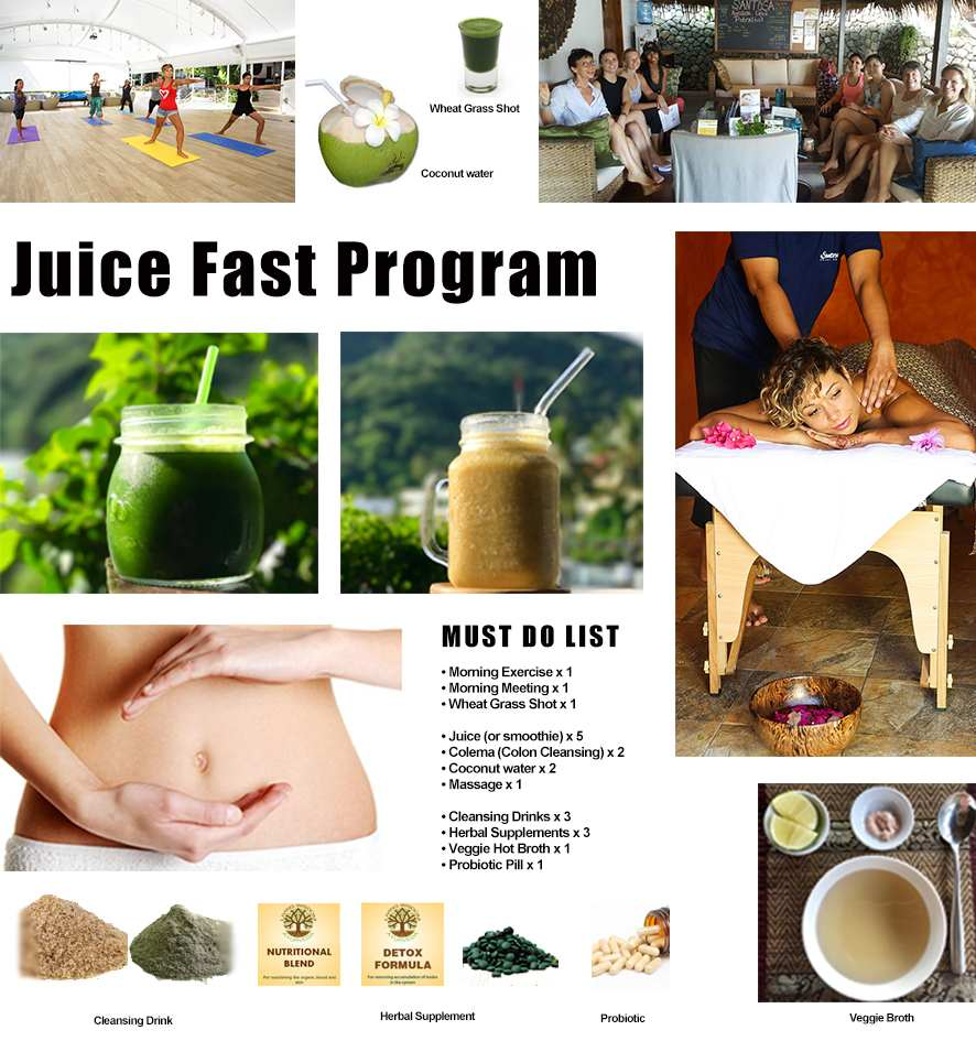 Juice Fast Program
