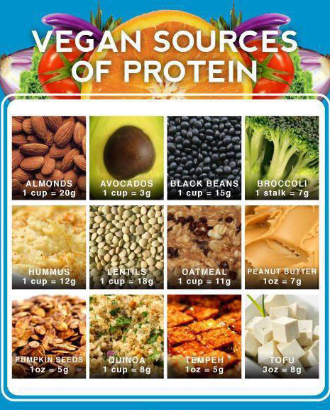 Heart Healthy Protein Foods