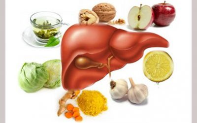 The Liver – miracle organ of detoxing