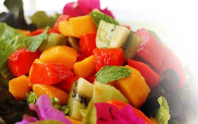 New Menu Launch at Santosa Vegan Restaurant