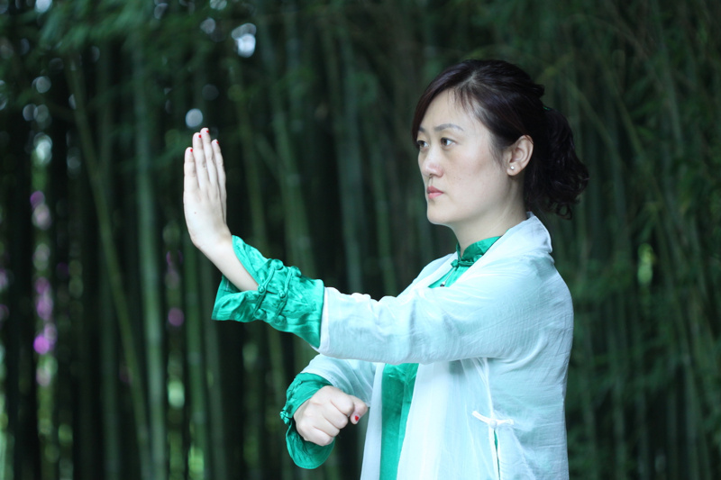 Tai Chi Master Workshop in Phuket