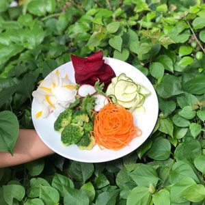 Santosa Resort Detox Wellness Spa Yoga Retreat Kata Beach Phuket Thailand HEALTHY VEGAN Raw Healing Retreat Clean Food 300x300